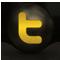 TWITTER-TRANS