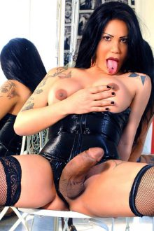 TRANS BOLOGNA – MILLY HOT